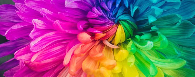 Clinica Bolzan Oftalmologia - Blog -Como nossas emocoes afetam a forma que vemos as cores