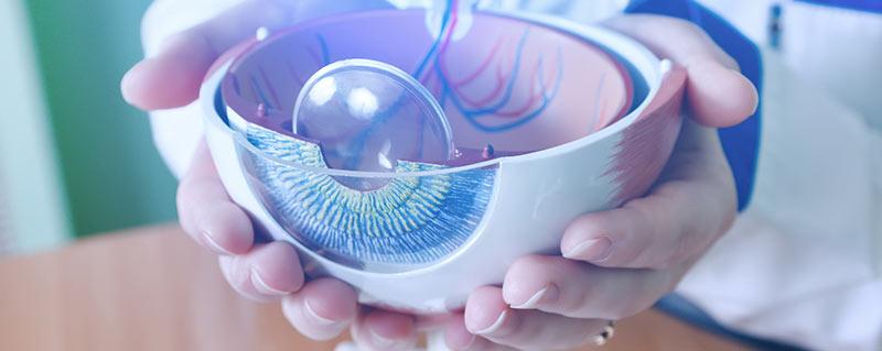 clinica-bolzan-oftalmologia-blog-tratamento-para-dmri