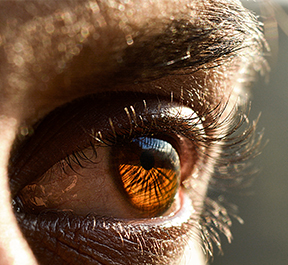 Curiosidades sobre os nossos olhos