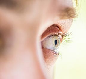 Mapeamento de retina: você precisa realizar?